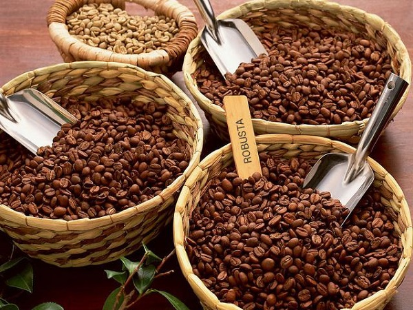 141101-phoi-tron-tao-can-bang-puriocoffee